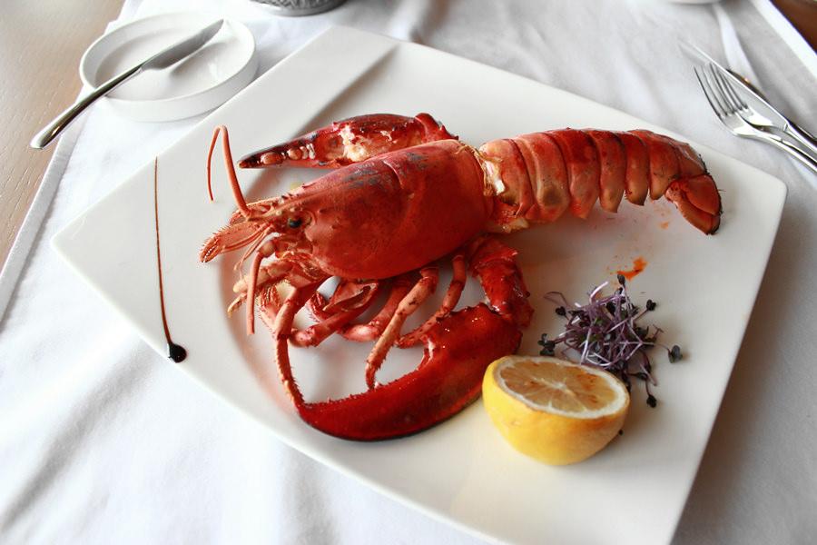 [台中] 日月千禧酒店 | 24F 極炙牛排館 The Prime-Grill 吃牛排嗑龍蝦 (午間套餐)
