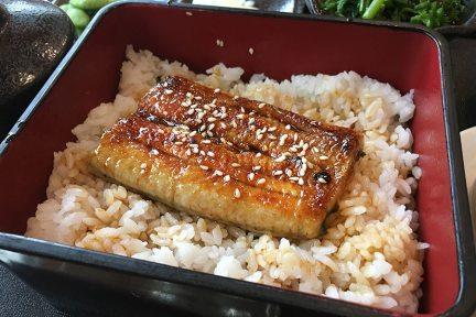 高雄前金 | 8品豐鰻料理 日式蒲燒鰻魚飯