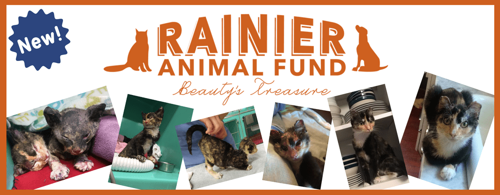 The Rainier Animal Fund: Helping Abused, Neglected, and Homeless Animals in Seattle