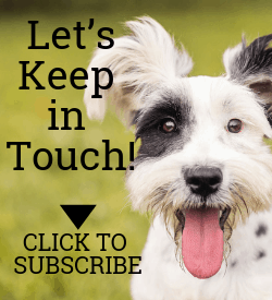 Subscribe to the Rainier Veterinary Hospital Newsletter