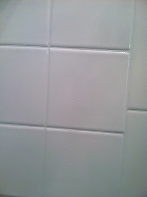 Painting over Tile in a Shower