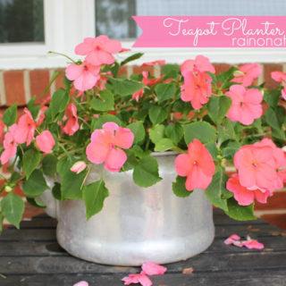Teapot Planter: Flower Pot made out of an old Teapot