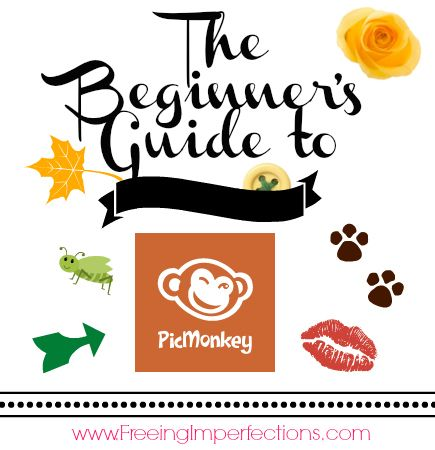 Picmonkey Tutorial for Beginners