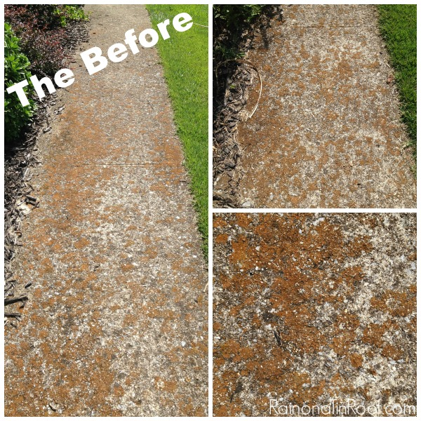 How to Clean A Sidewalk | Outdoor Cleaning Tips | Outdoor Cleaning Hacks | Exterior Cleaning