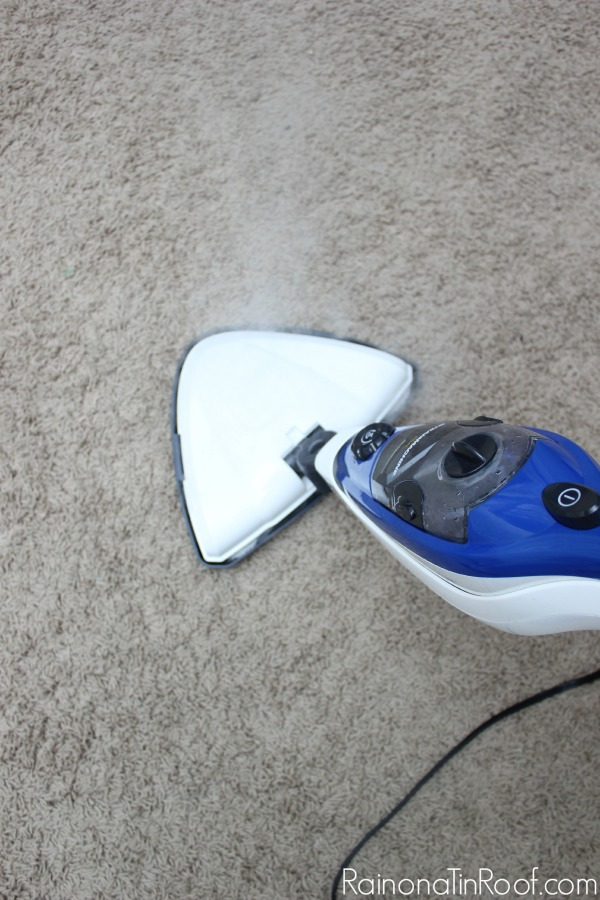 Super easy way to get rid of that nasty smell! How To Get Pet Stains and Odors Out of Your Carpet without Chemicals