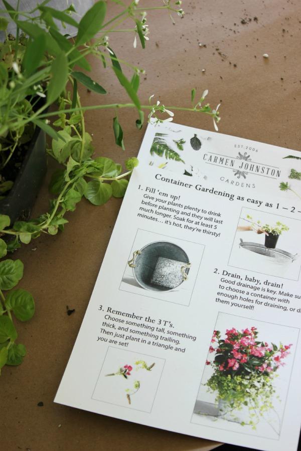 Carmen Johnston Container Gardening
