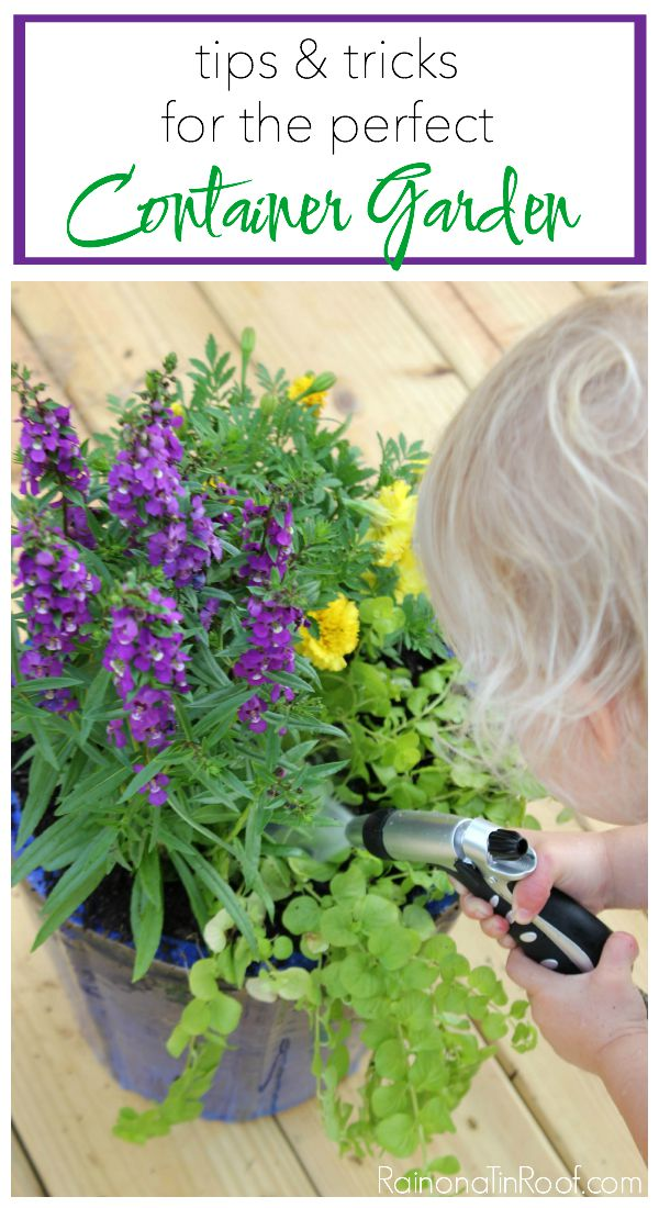 How to Plant a Container Garden | How to Make Flowers Last Longer | How to Make Flowers Live Longer | Tips for Growing Flowers