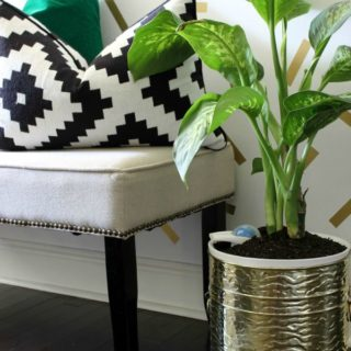 How I Water My Indoor Plants Only ONCE Every Few Months - And yes, they are thriving! / Nimbus Pot