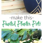 Snazzy Painted Planter Pots