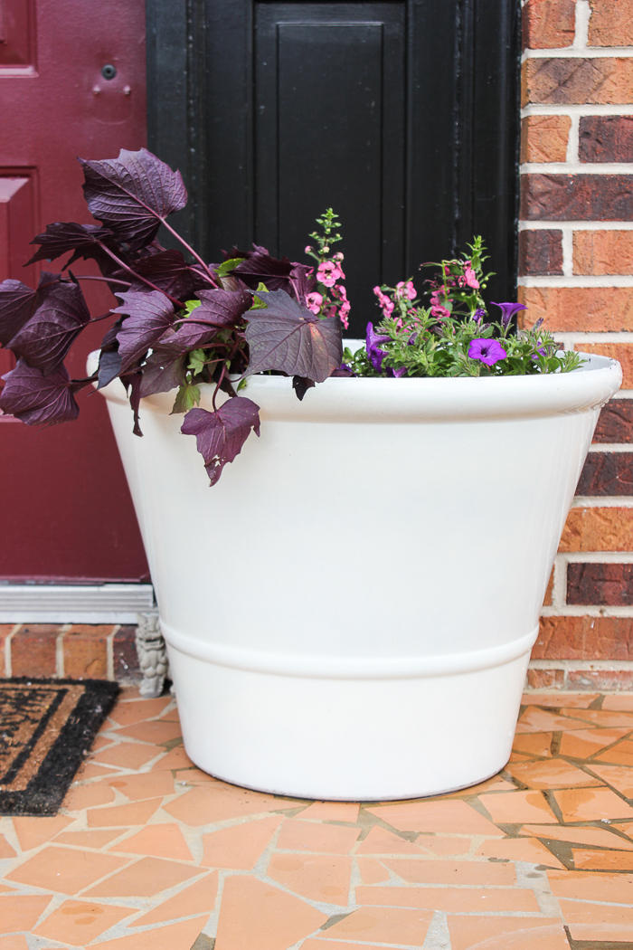 Tips for Beautiful Planters All Summer Long