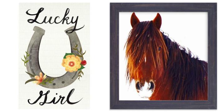Colorful Boho Cowgirl Girls Bedroom Design: Art