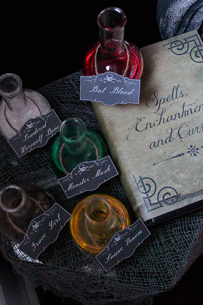 Spell Book Cover and Potion Labels Printable Files