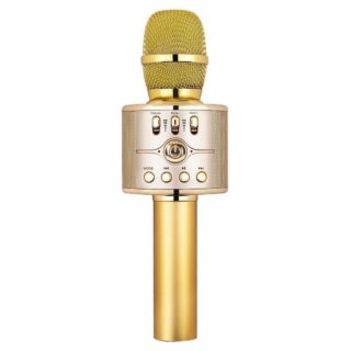 What the Circus is Getting for Christmas - Microphone