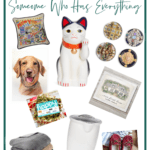 Unique Gifts for Someone Who Has Everything List