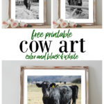 Free Printable Cow Art