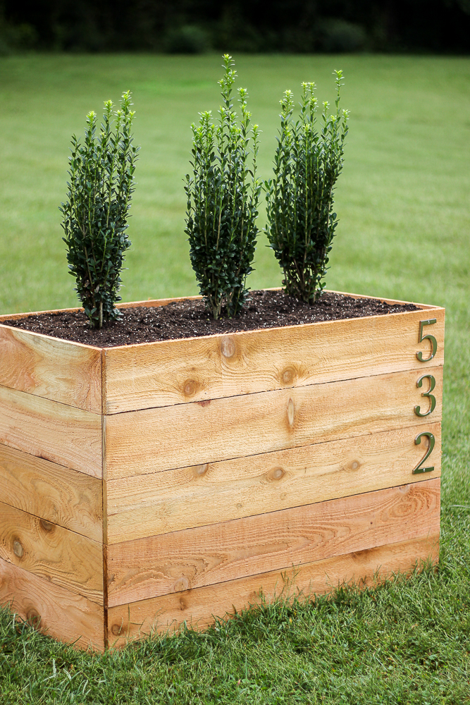 Cedar Planter Box DIY with shrubs planted in it.