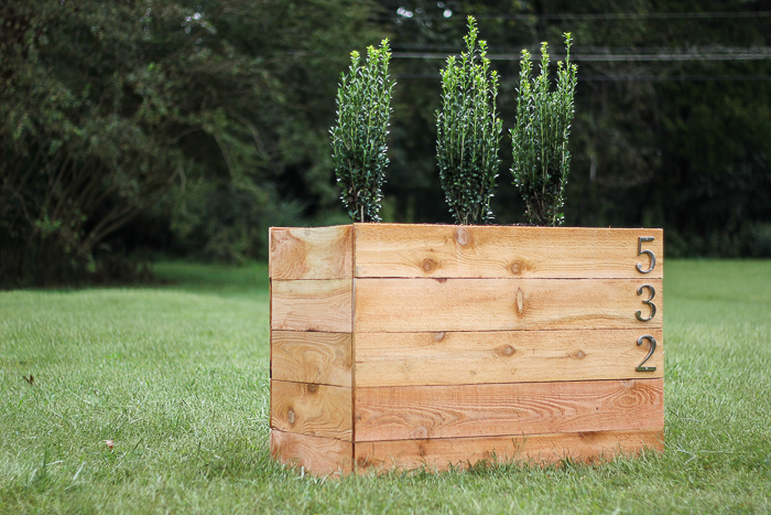 DIY Cedar Planter Box with Shrubs