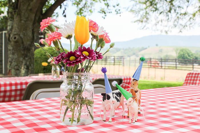 Cheap and Easy Party Decoration Ideas