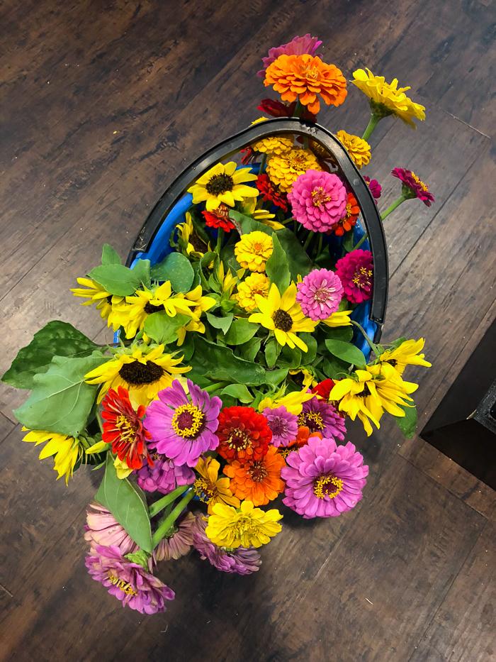Best Flowers for Cutting Garden
