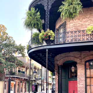 Things for Kids to Do in New Orleans