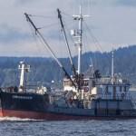 Power scow, Chichagof, fish tender, Port Townsend,