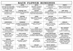 This is a good chart for seeing which flower essence to be applied to which emotional situation.  But Al taught us that we cannot always take them so literally, sometimes we need a different remedy.  This is where our own intuition or muscle testing can help us to determine what we truly need.