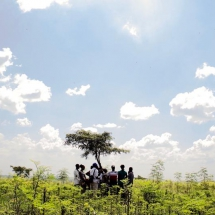 Farmers going through field training in our Moringa Academy