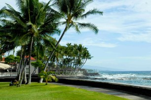 """Kona Reef is a tourist center with a small-town feel. It is home to the Hawaiian International Billfish Tournament, the """"Grandfather of all Big Game Fishing Tournaments"""". To see the best sights, follow Ali'I Drive as it weaves from Kailua Pier south to Keauhou Bay, with the azure blue ocean at your side."""