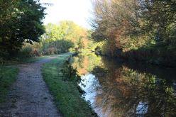 Autumn canal watch