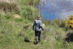 RSPB Valley Wetlands