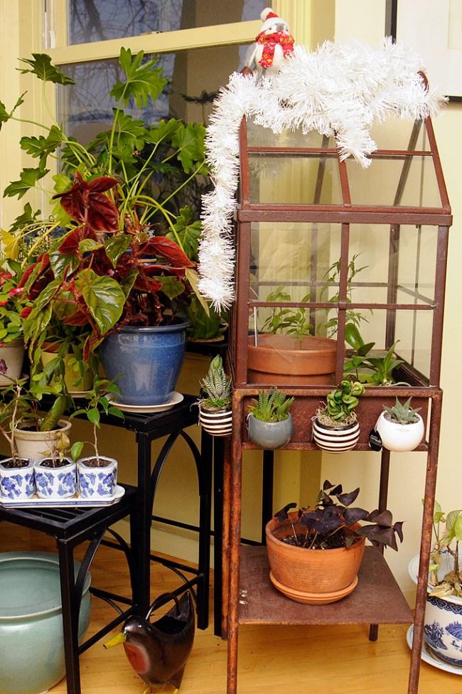 Garden_PlantStands