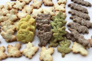 自製楓糖餅乾Homemade Maple Cookies Recipe