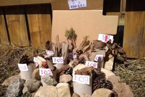 我們家的蘭花小孩My Orchid Children