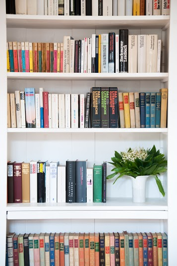 biblioteca cincsor