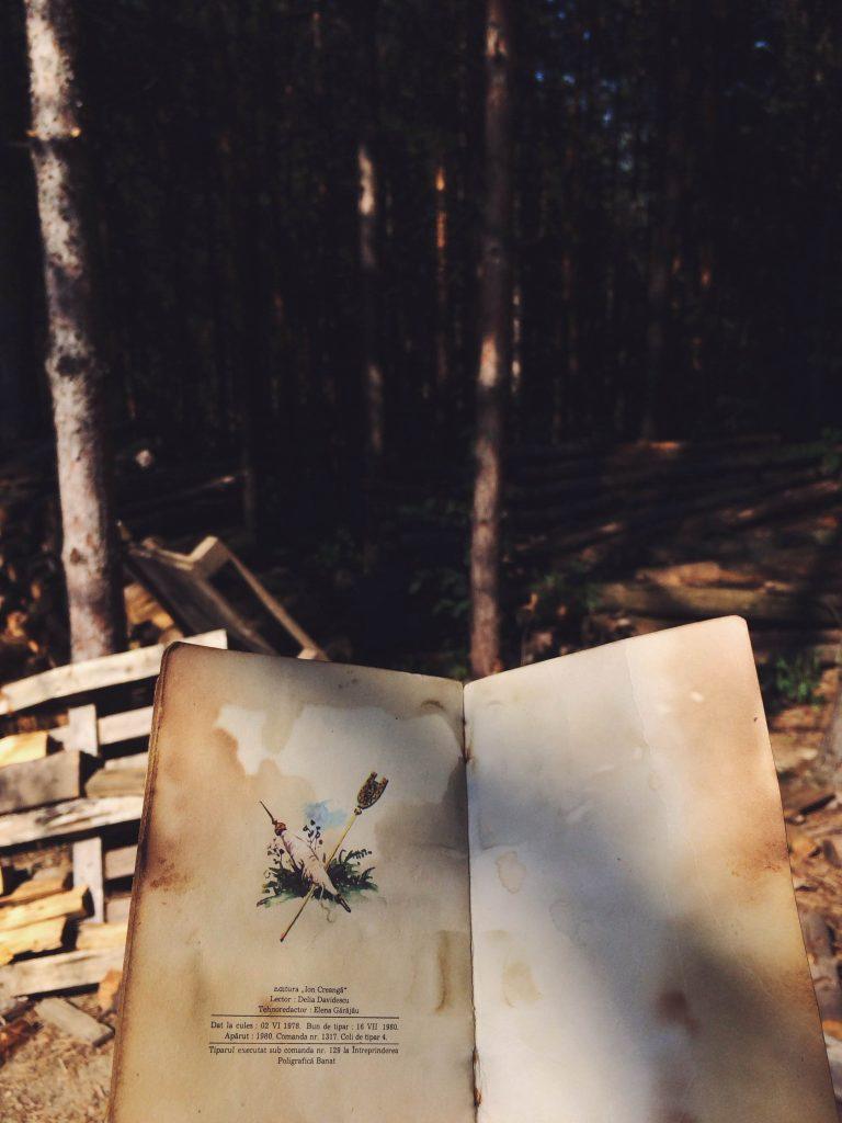 carte bunica