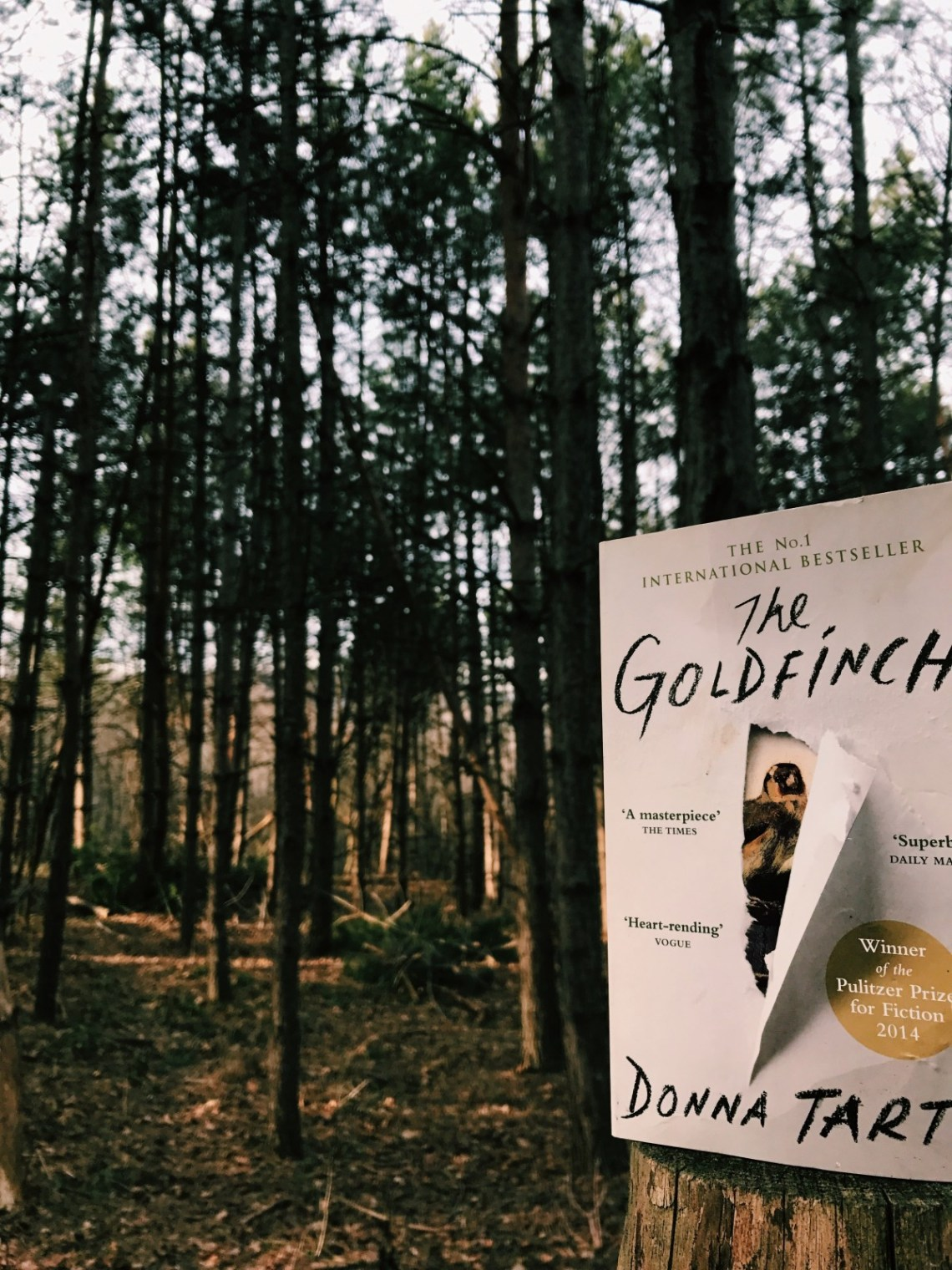 the-goldfinch-book