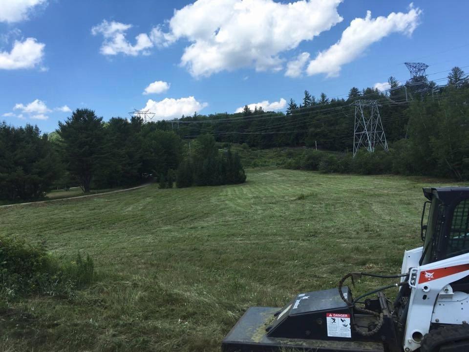 Field after brush hogging