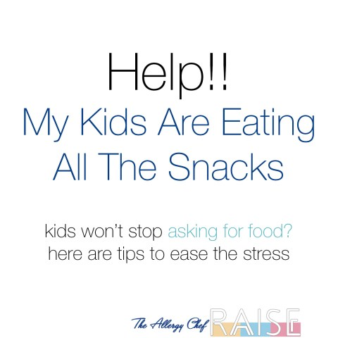 Help! My Kids Are Eating All The Snacks by The Allergy Chef