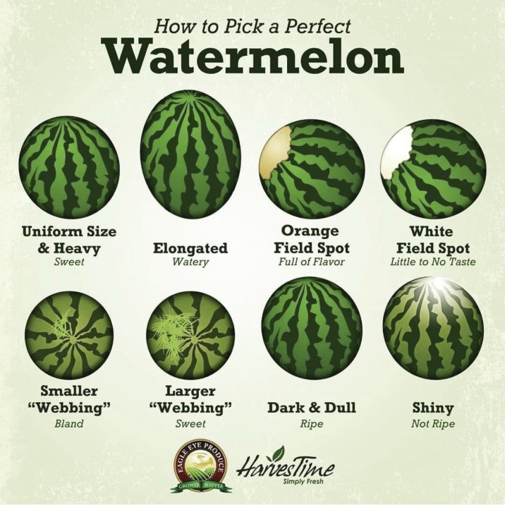 How To Pick a Watermelon by Eagle Eye Produce