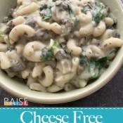 Vegan Cheese Free Creamy Mac