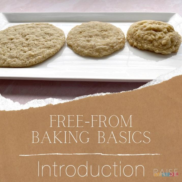 Free From Baking Basics: Introduction