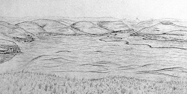 Sketch of Twenty Hill Hollow by John Muir