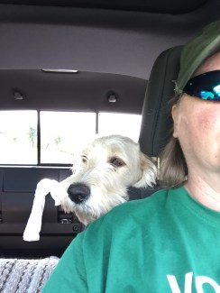 Backseat driver