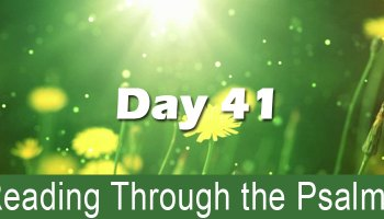 Reading through the Psalms Day 38: Psalm 38, 88, & 138
