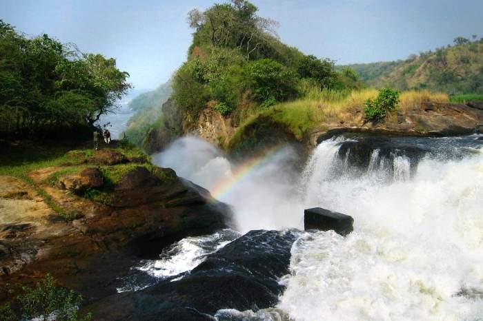 Visit the Murchison Falls National Park
