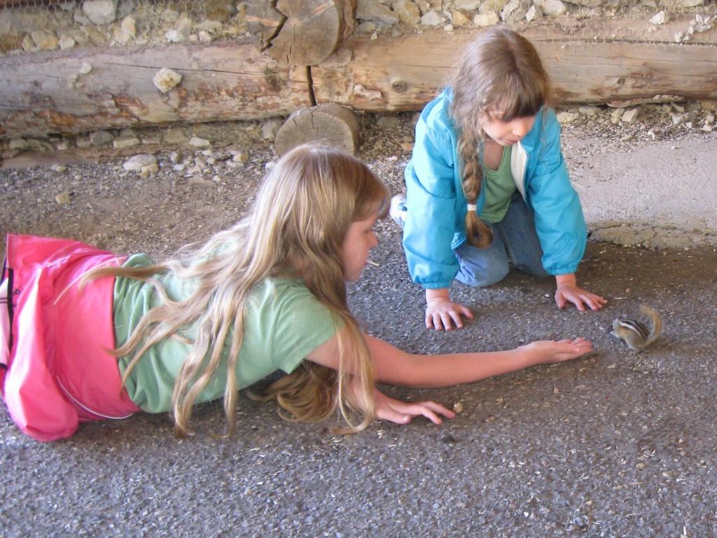 Girls feeding chipmunks