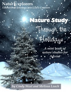 NatureHolidaysCoverR1-231x300