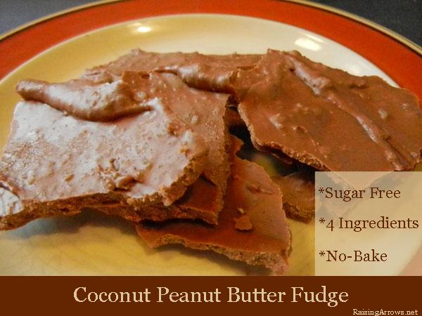 Coconut Peanut Butter Fudge {Sugar Free!}