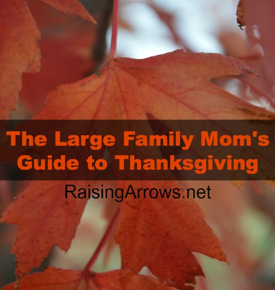 The Large Family Mom's Guide to Thanksgiving   RaisingArrows.net