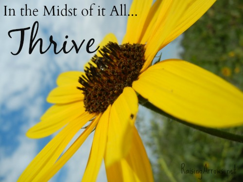 In the Midst of It All…Thrive